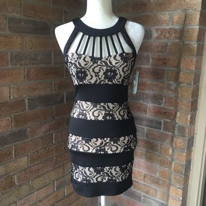 Trixxi Black & Nude Lace Fitted Dress